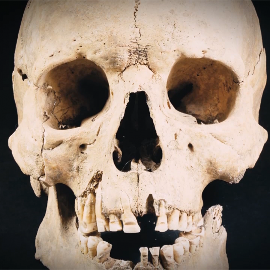 museum promotional video